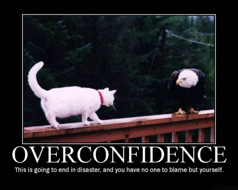 confidence funny poster