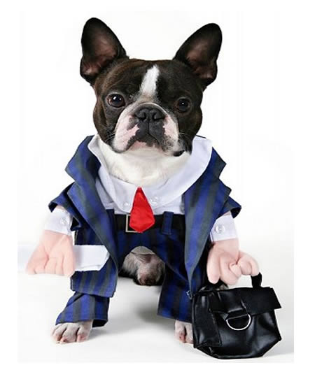 tie funny dog costume