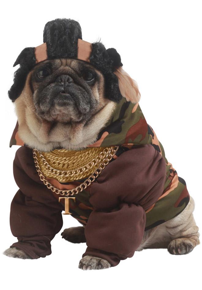 halloween funny dog costume