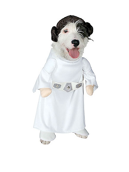 angel funny dog costume