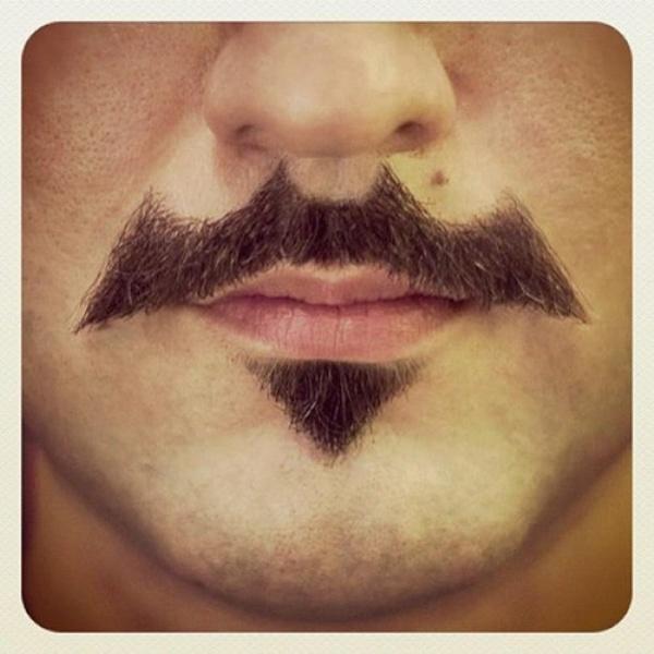 bat funny mustache