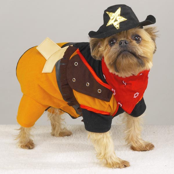 4 pirate funny dog costume
