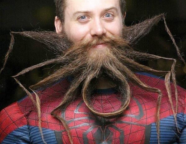 spider funny mustache
