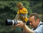 funny-monkey on camera