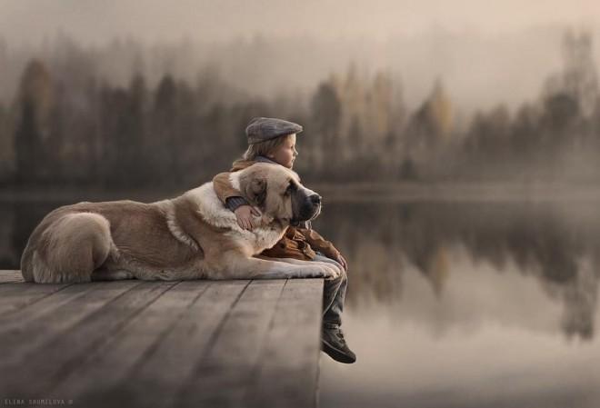 loving pets photo