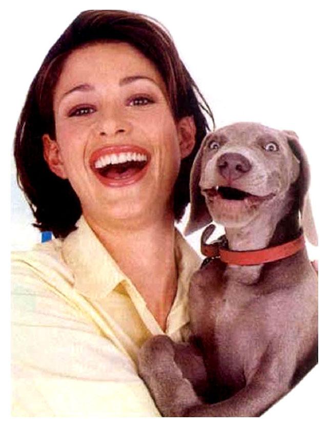 funny dog expression