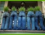 funny-home-garden