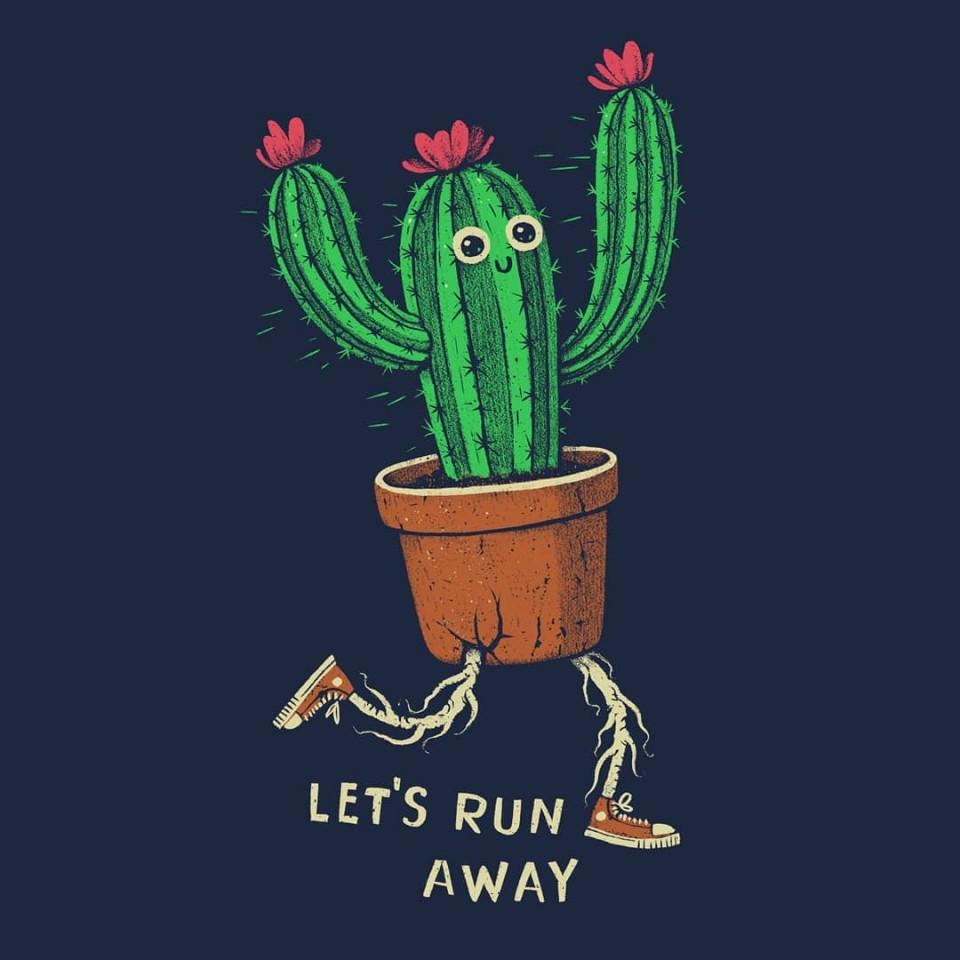 funny art cactus