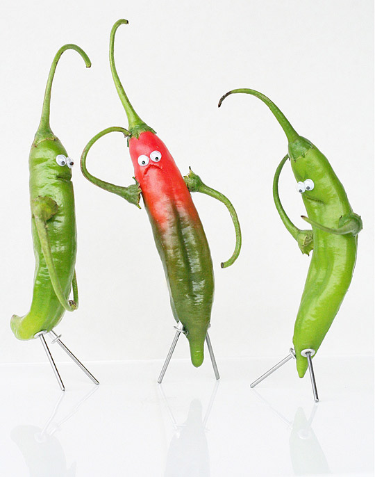 chilli vegetable art