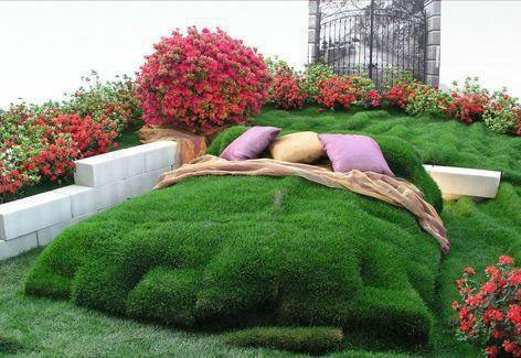 funny grass bed
