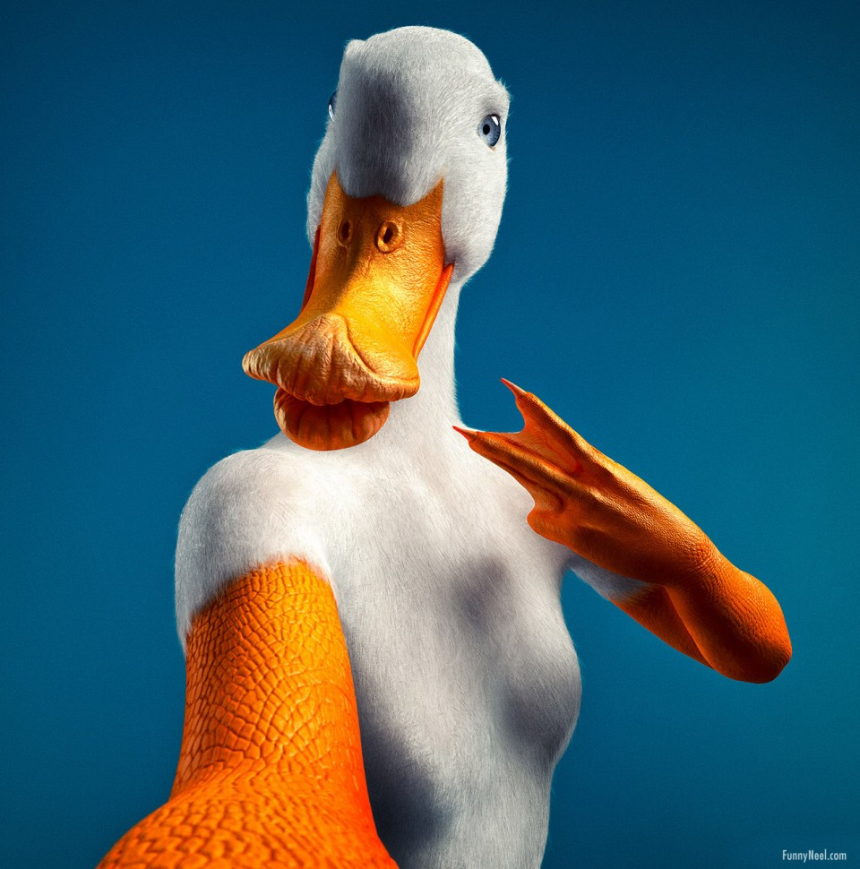 funny ads duck selfie photoshopped