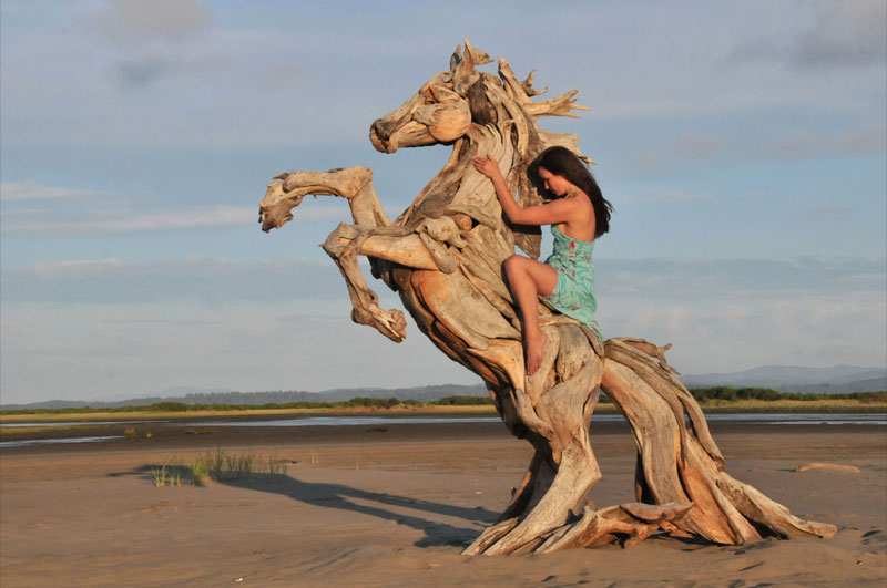 amazing driftwood sculptures