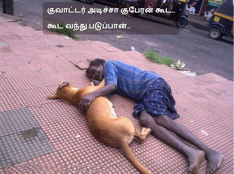 drunken man lying with dog