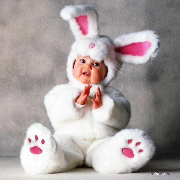 funny rabbit dress baby