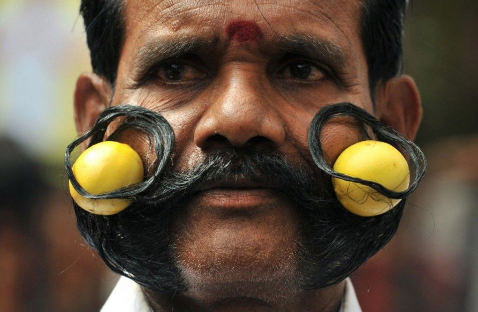 funny tail mustache people