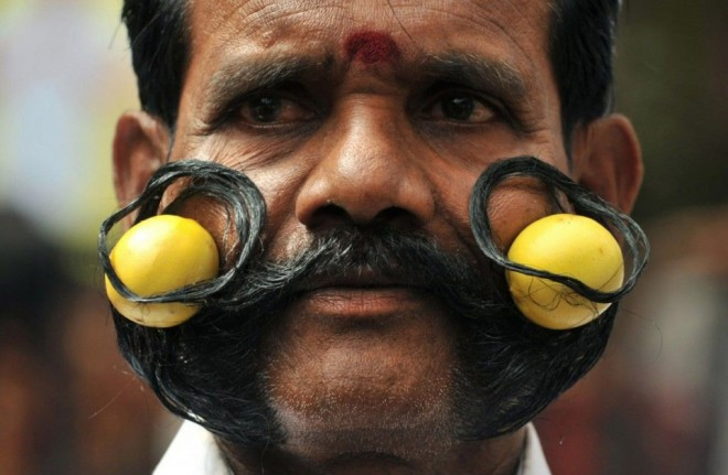 funny-tail-mustache-people