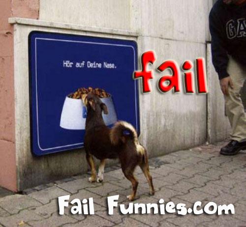 funny dog fail