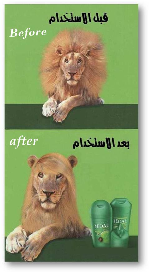 creative ad straight hair shampoo