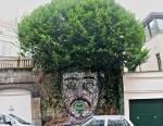 street-art-tree
