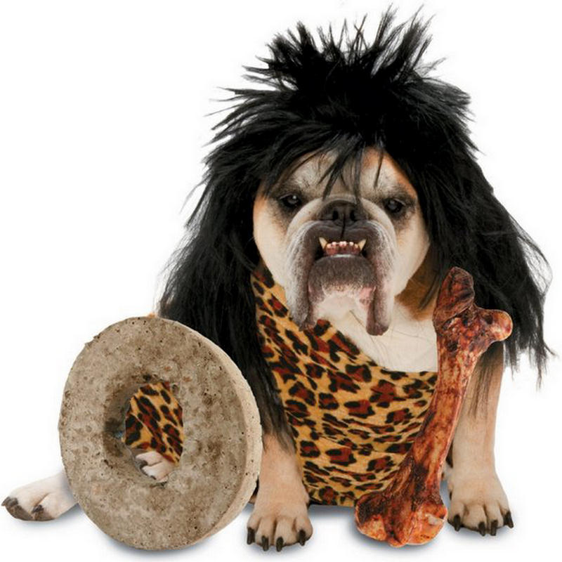 funny dog costumes halloween