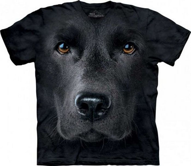 d dog face tshirts