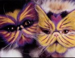4-funny-painted-cats