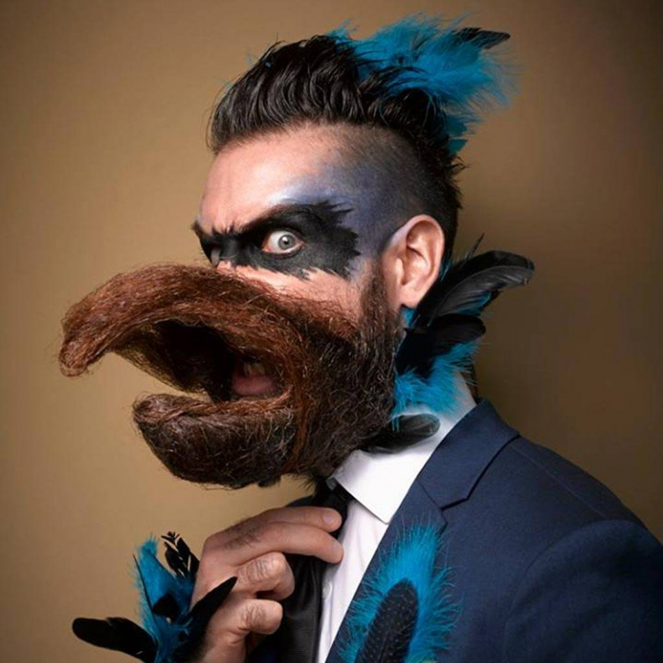 funny beard moustache bird by incredibeard