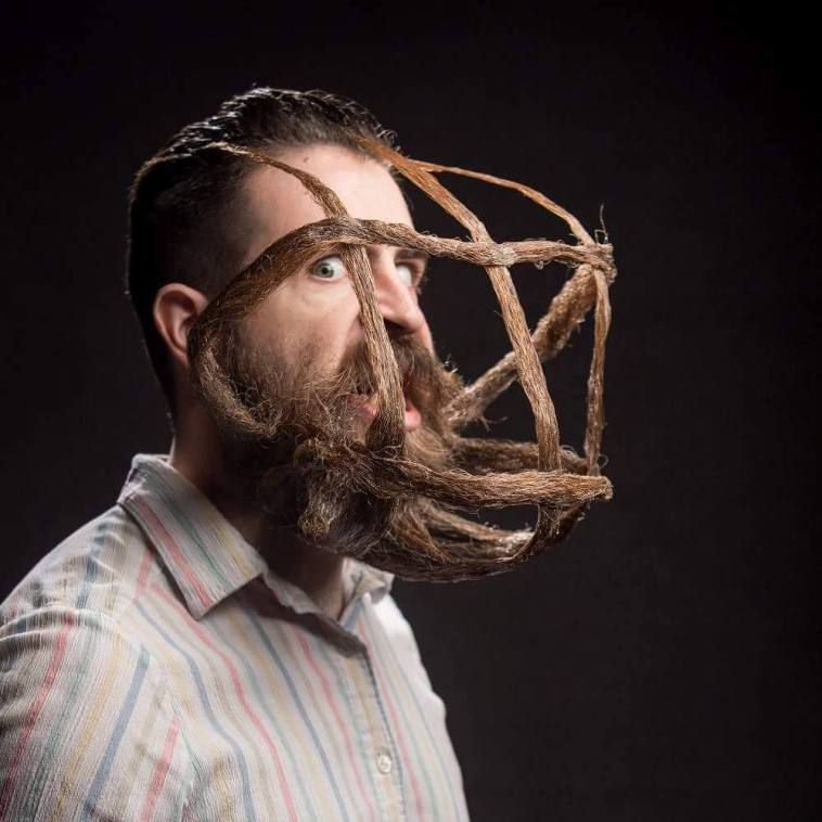 funny beard moustache web by incredibeard