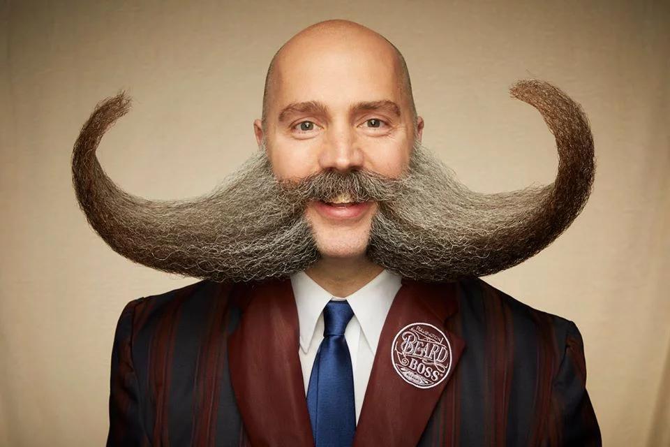 funny beard moustache buffalo horn