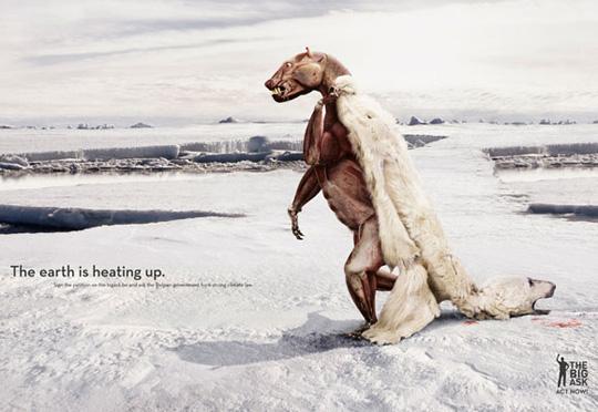 polar bear funny ads