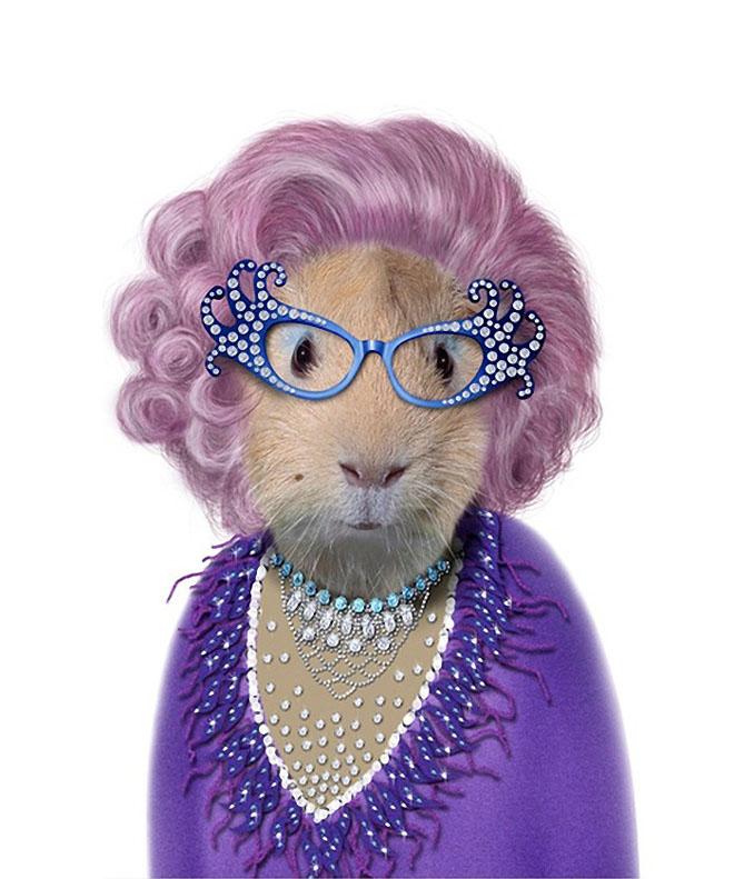 funny dog costume dame edna everage