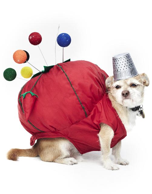dog fashion show 2012 11