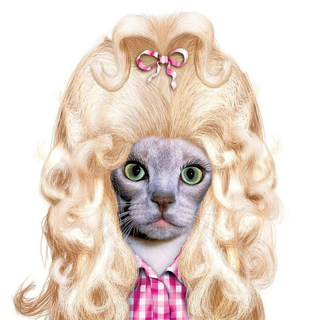 Dolly Parton - Dog Disguisefamous person faces celebrity animal funny