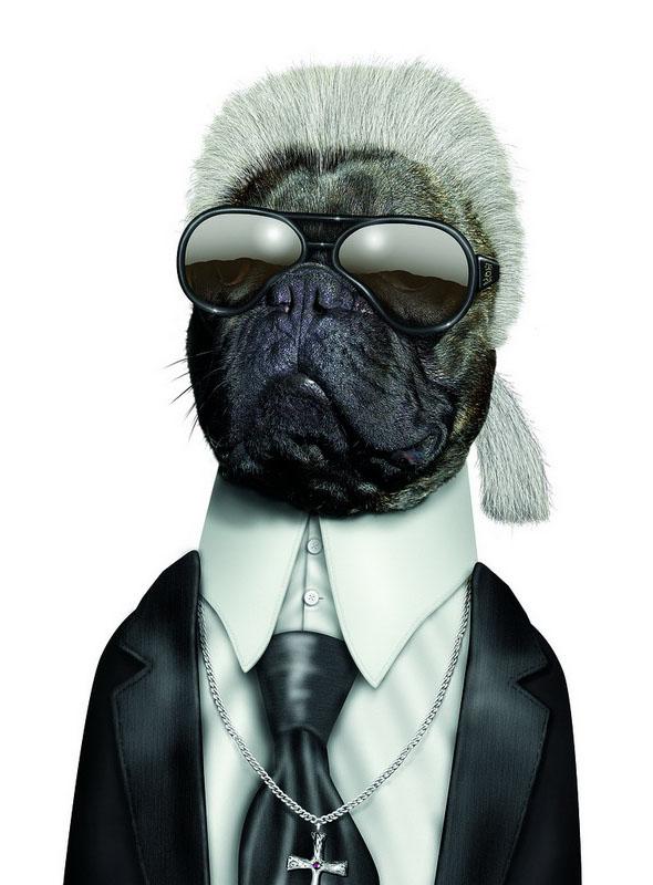 funny dog costume karl lagerfeld