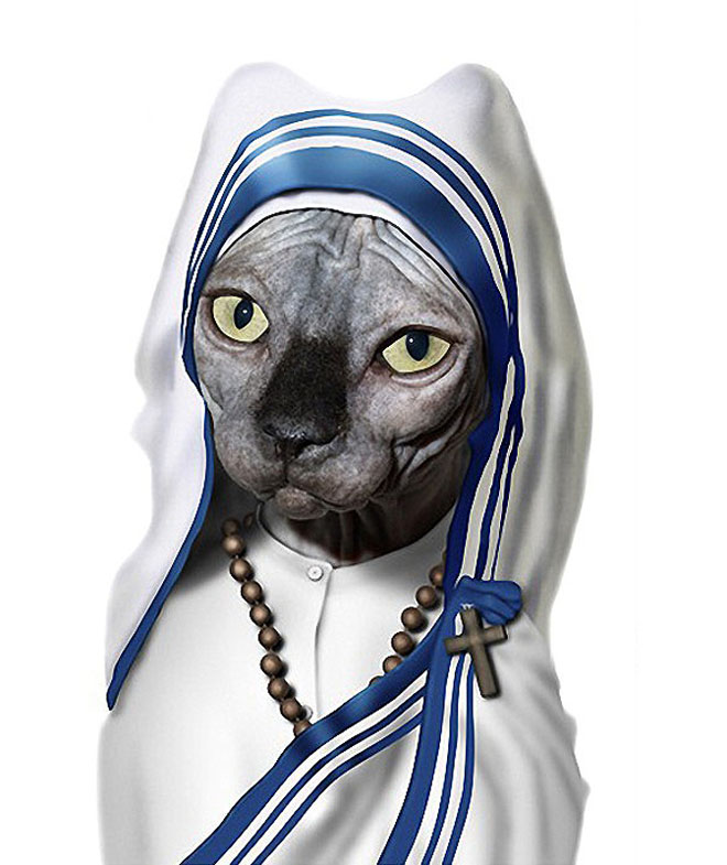 MOTHER TERESA - Dog Disguisefamous person faces celebrity animal funny