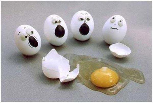oh my friend  egg friends