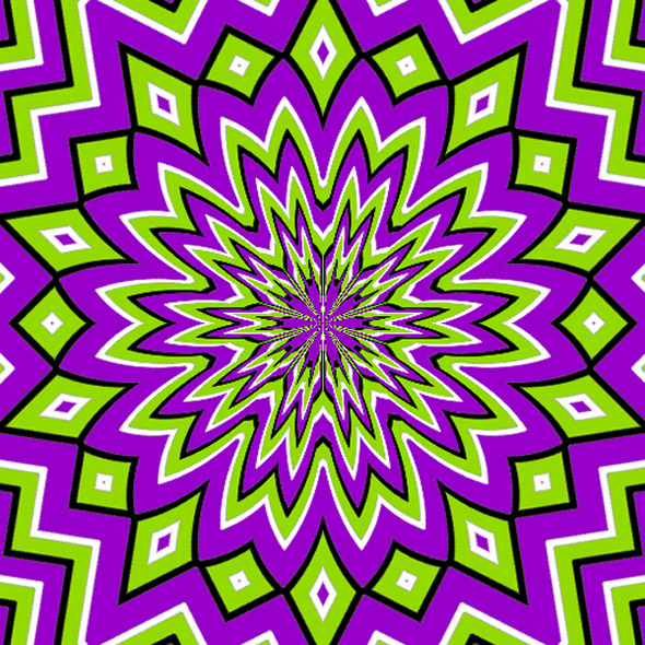 optical illusion images gif funny (42)
