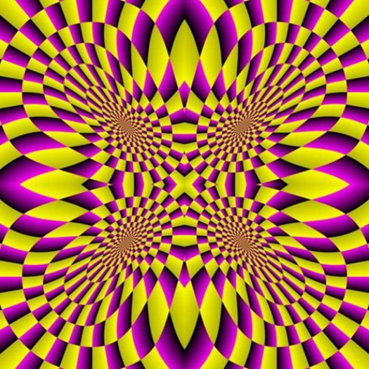 optical illusion images gif funny (77)