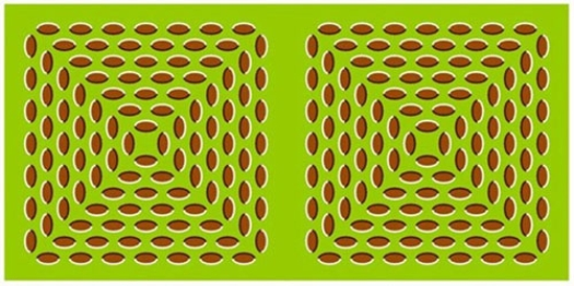 Optical Illusion Images Gif Funny (78)