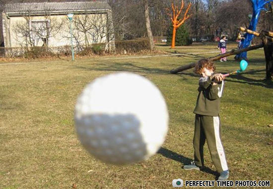 play time perfectly timed photograph