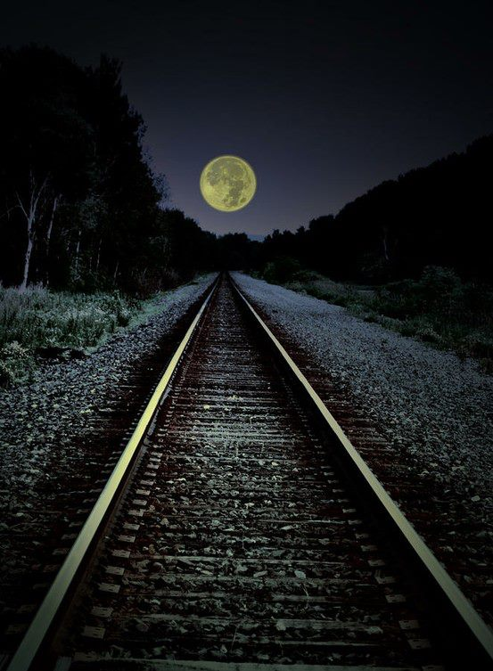beautiful picture track to moon