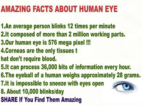 Amazing Facts Human Eye