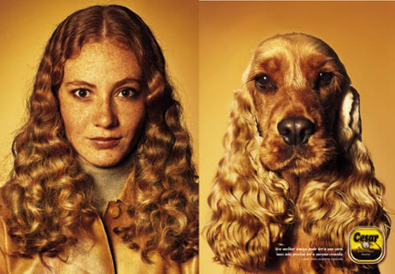 compare people with dog (2)