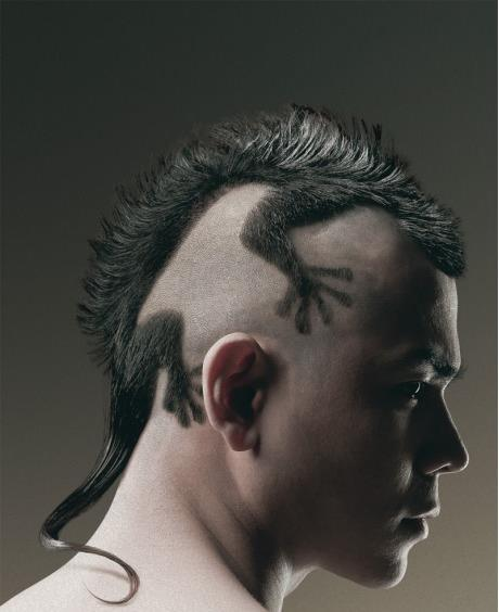 funny men hairstyle lizard