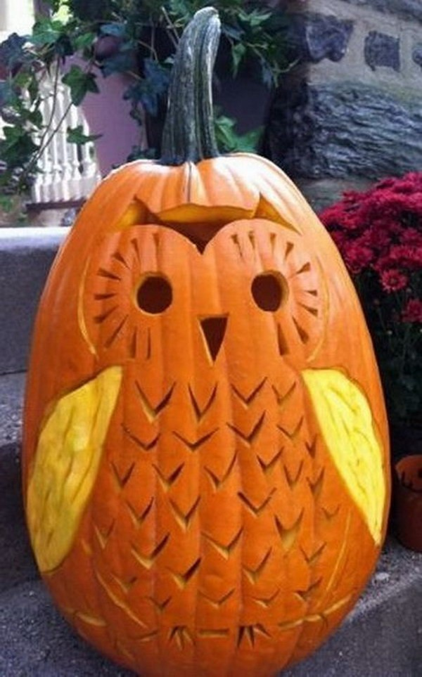 cute owl pumpkin carving idea