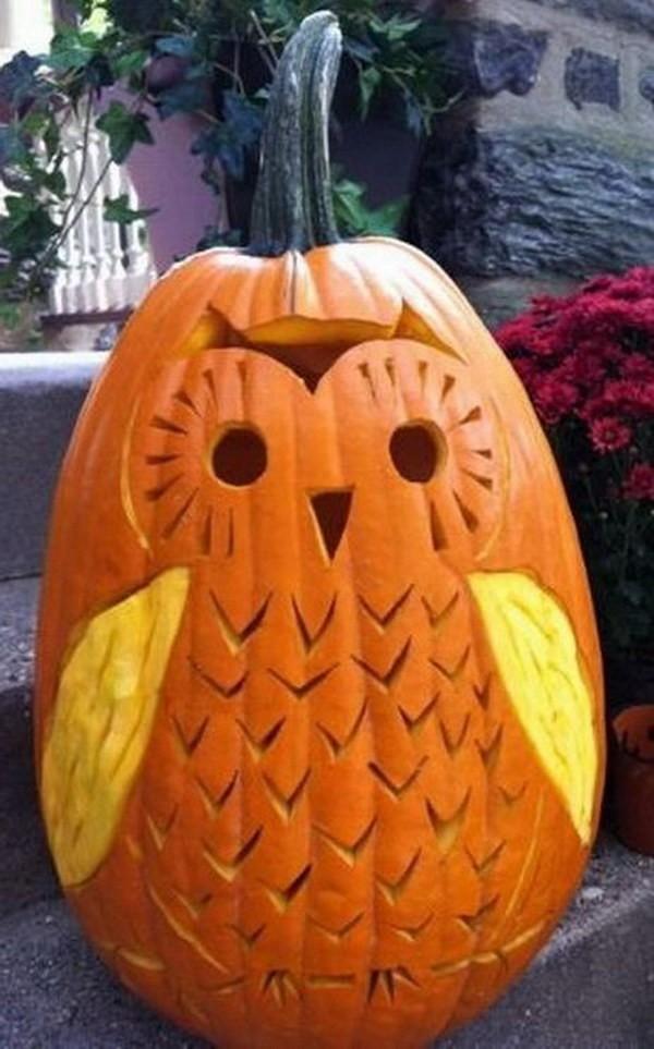 cute owl pumpkin carving idea