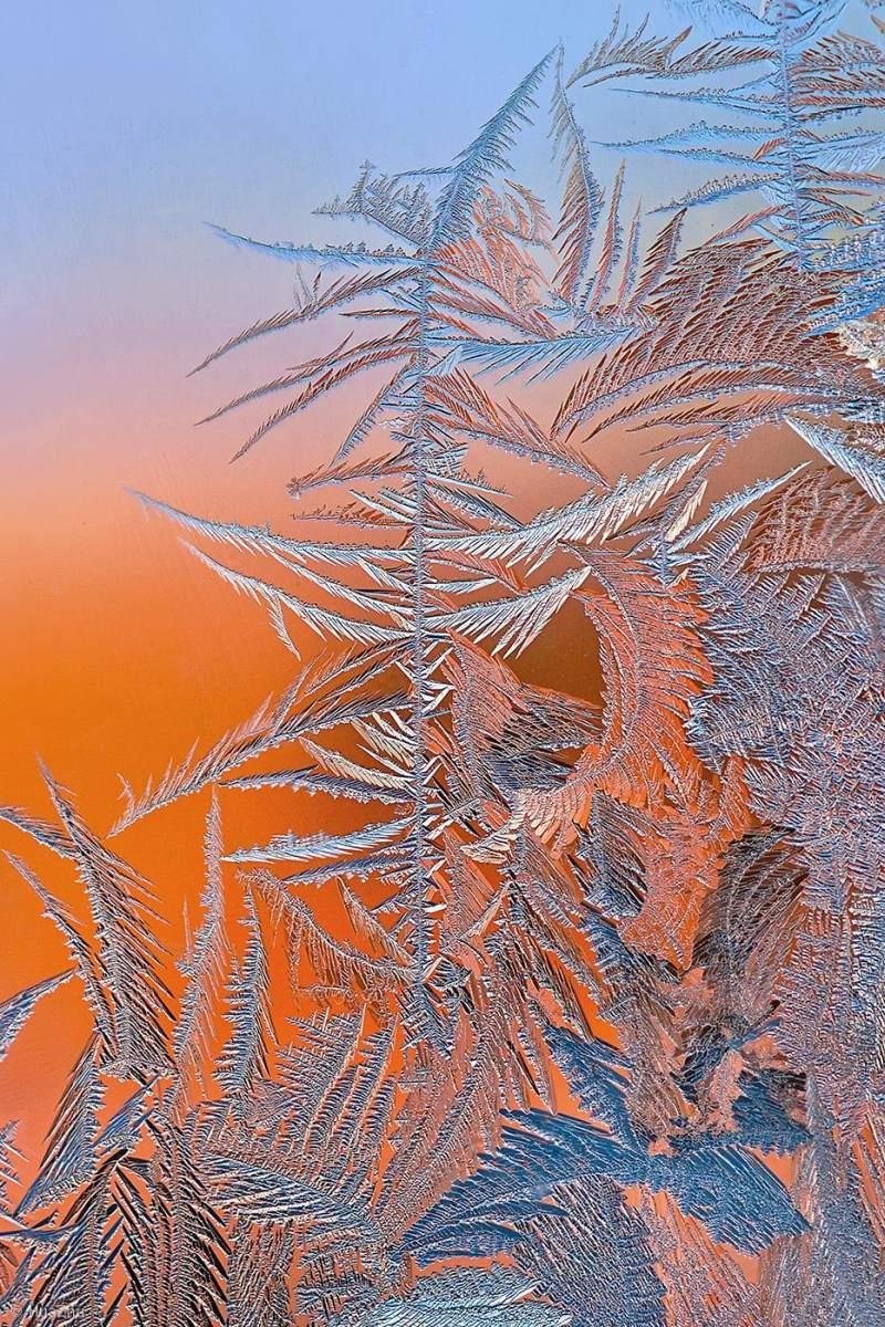 beautiful ice formation ice flower hua zhu