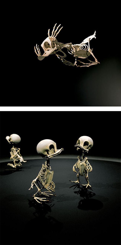 realistic skeleton cartoon characters hyungkoo lee