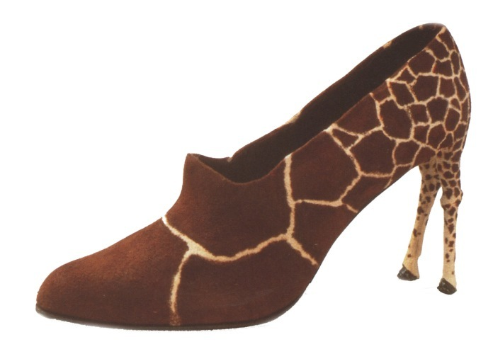 giraffe funny shoe pictures
