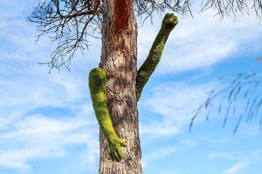 nature sculpture installation tree monsieur plant